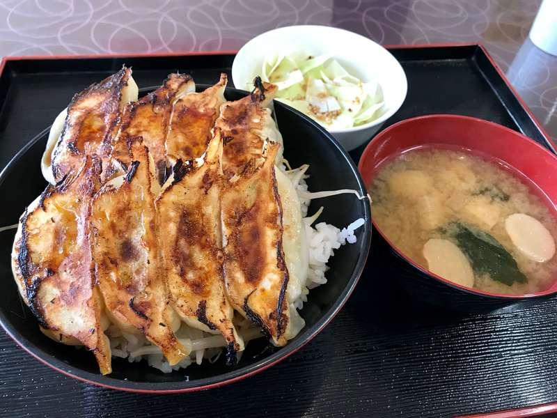 「【かさご餃子】意外にいけるぞ!ご飯の上に餃子がのった浜松餃子丼!!」のアイキャッチ画像
